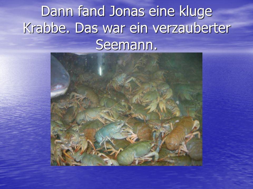 Dann fand Jonas eine kluge Krabbe. Das war ein verzauberter Seemann.