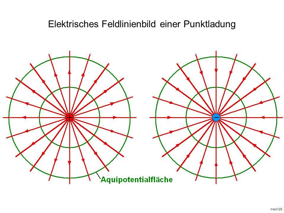 med125 Elektrisches Feldlinienbild einer Punktladung