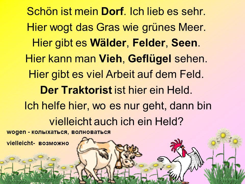 3 das Schwein (die – e) das Schaf (die –e) das Pferd (die – e) die Kuh (die – ¨e) die Ziege (die – en) das Huhn (die – ¨ er) der Hahn (die - ¨ e) die Ente (die –en) die Gans (die – ¨ e)