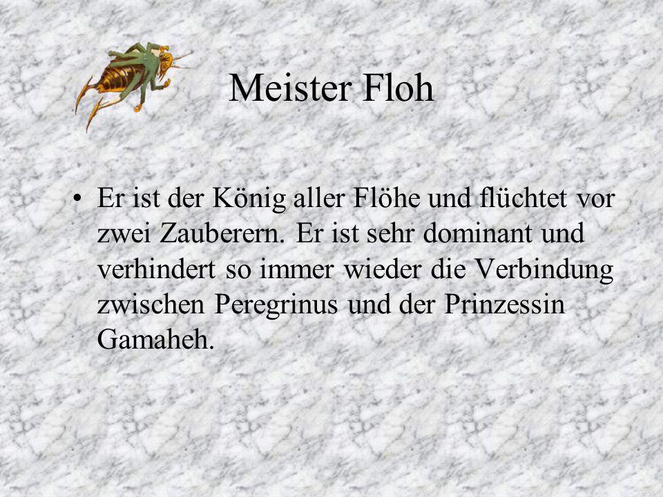Meister Floh Er ist der König aller Flöhe und flüchtet vor zwei Zauberern.