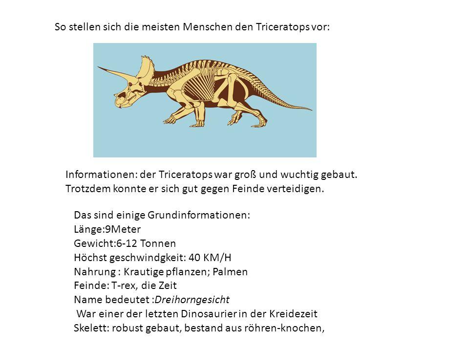 DINOSAURIER: der triceratops