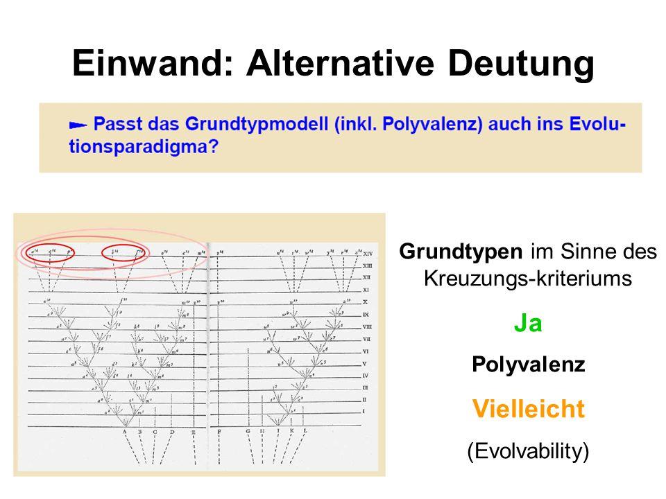 Einwand: Alternative Deutung Grundtypen im Sinne des Kreuzungs-kriteriums Ja Polyvalenz Vielleicht (Evolvability)