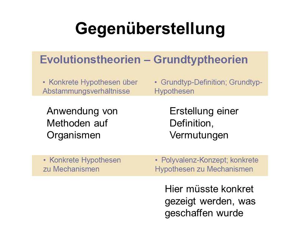 Gegenüberstellung Anwendung von Methoden auf Organismen Erstellung einer Definition, Vermutungen Hier müsste konkret gezeigt werden, was geschaffen wu