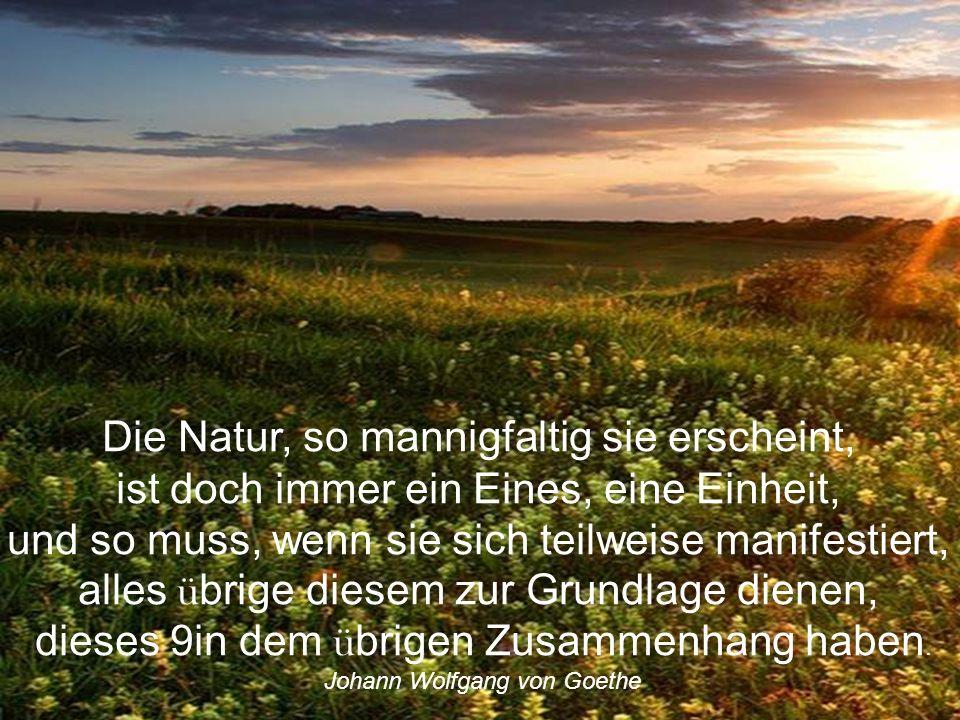 Wir leben in einem gef ä hrlichen Zeitalter. Der Mensch beherrscht die Natur, bevor er gelernt hat, sich selbst zu beherrschen. Albert Schweitzer