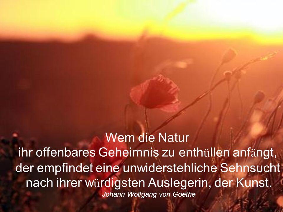 Die Natur ist nicht an der Oberfl ä che, sie ist in der Tiefe. Die Farben sind der Ausdruck dieser Tiefe an der Oberfl ä che. Sie steigen aus den Wurz