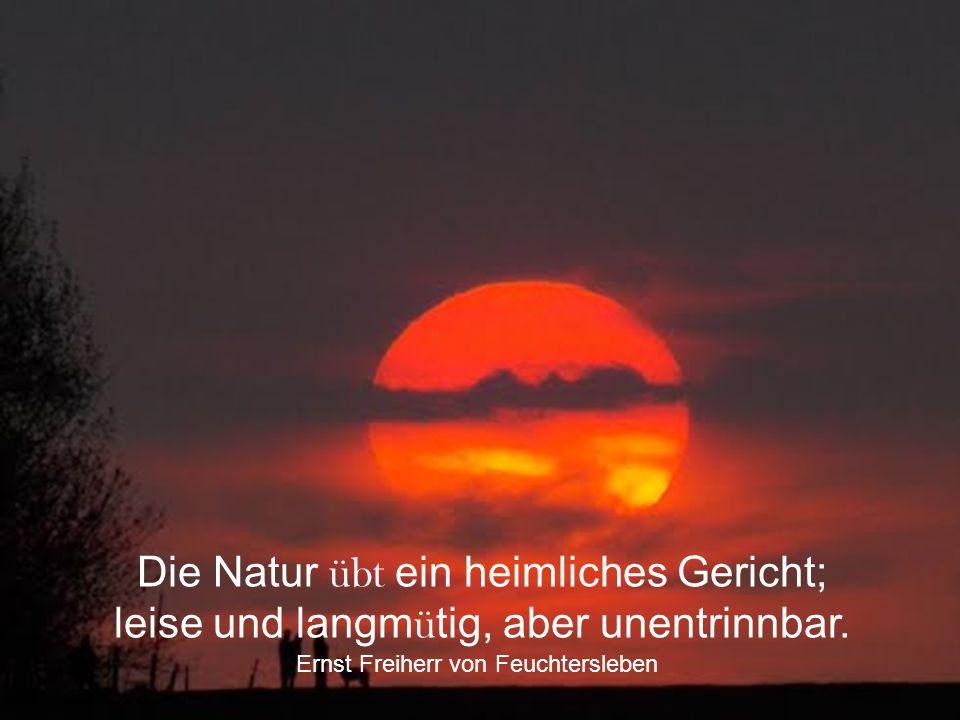 Mutter Natur ist das Buch, das man lesen und sehen muss. Anton Cechov