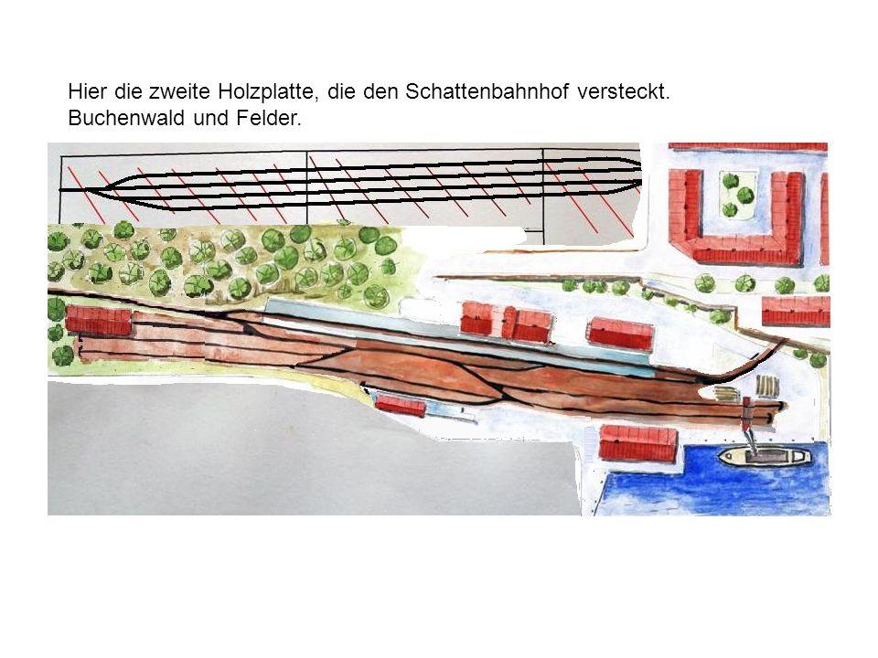 Hier die zweite Holzplatte, die den Schattenbahnhof versteckt. Buchenwald und Felder.