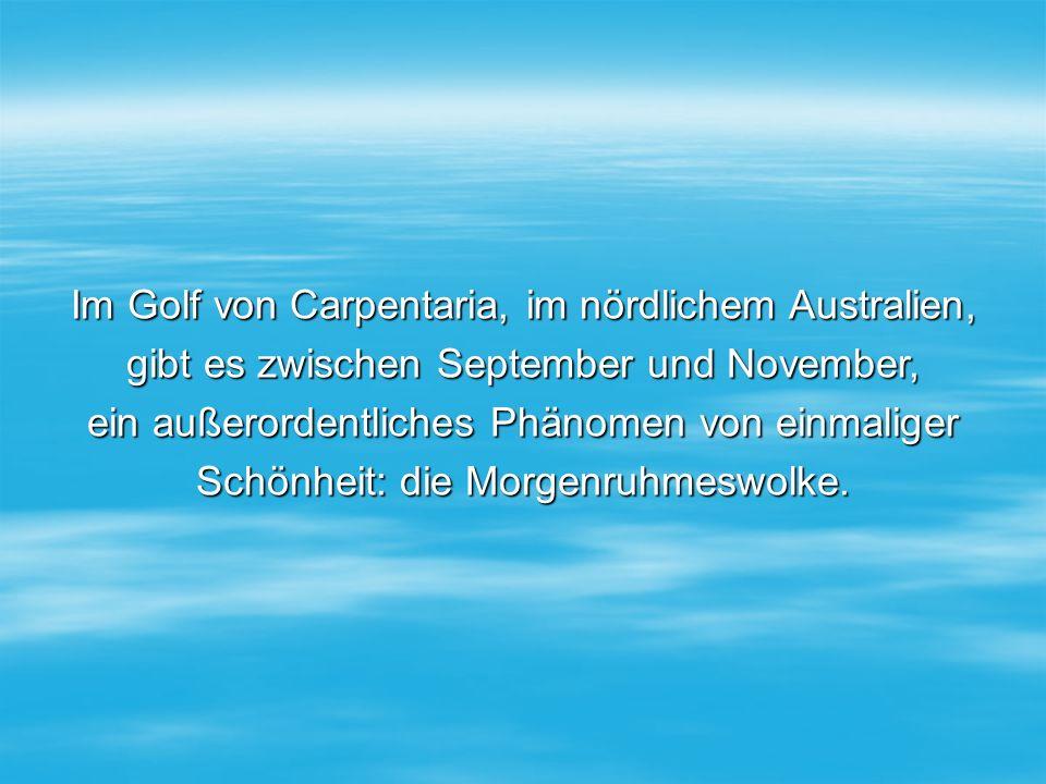 Im Golf von Carpentaria, im nördlichem Australien, gibt es zwischen September und November, ein außerordentliches Phänomen von einmaliger Schönheit: die Morgenruhmeswolke.