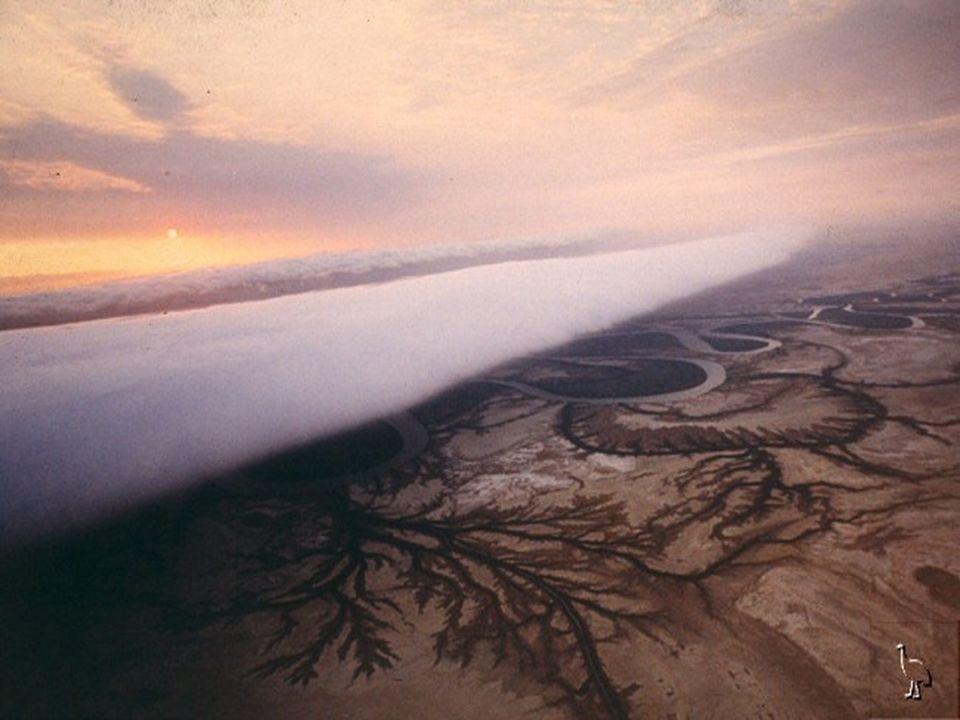 Jeder Morgen, wenn die Sonne aufgeht, formt sich eine Wolkenband 1,6 bis 3,2 km hoch und 600 bis 1.000 km breit, welches den ganzen Horizont ausfüllt und sich mit einer Geschwindigkeit von 40 km/h bewegt.