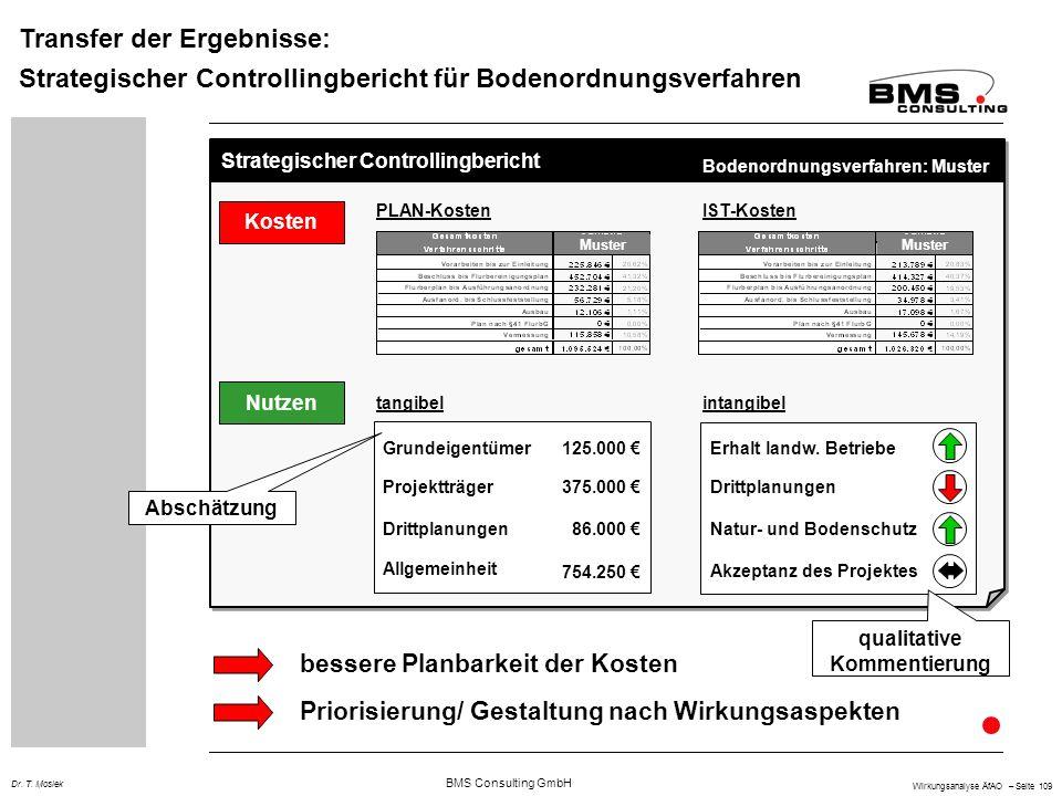 BMS Consulting GmbH Wirkungsanalyse ÄfAO – Seite 109 Dr. T. Mosiek Transfer der Ergebnisse: Strategischer Controllingbericht für Bodenordnungsverfahre