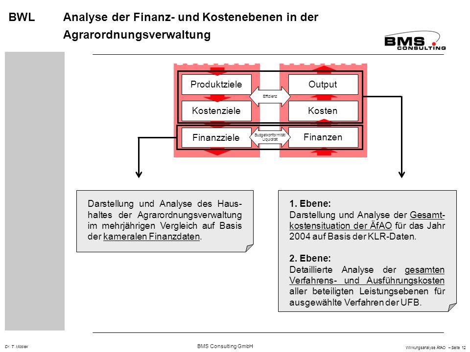 BMS Consulting GmbH Wirkungsanalyse ÄfAO – Seite 12 Dr. T. Mosiek BWL Analyse der Finanz- und Kostenebenen in der Agrarordnungsverwaltung Kosten Koste