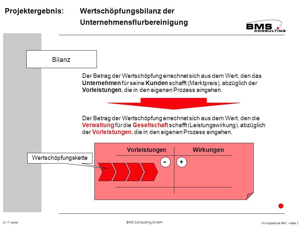 BMS Consulting GmbH Wirkungsanalyse ÄfAO – Seite 3 Dr.