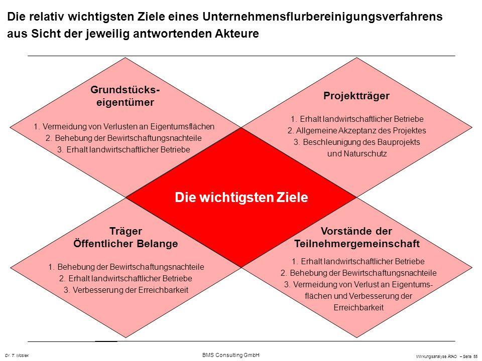 BMS Consulting GmbH Wirkungsanalyse ÄfAO – Seite 55 Dr. T. Mosiek Die wichtigsten Ziele Grundstücks- eigentümer Träger Öffentlicher Belange Vorstände