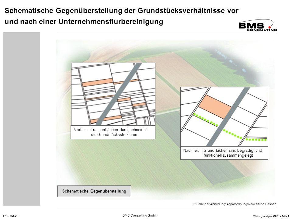 BMS Consulting GmbH Wirkungsanalyse ÄfAO – Seite 9 Dr. T. Mosiek Schematische Gegenüberstellung der Grundstücksverhältnisse vor und nach einer Unterne