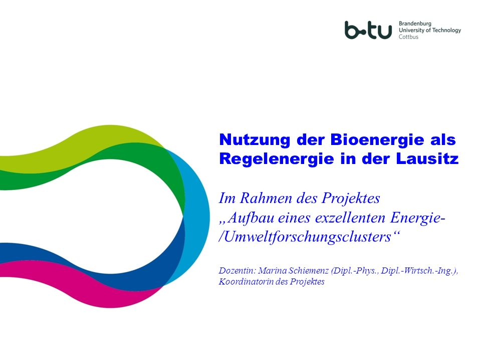Nutzung der Bioenergie als Regelenergie in der Lausitz Im Rahmen des Projektes Aufbau eines exzellenten Energie- /Umweltforschungsclusters Dozentin: M