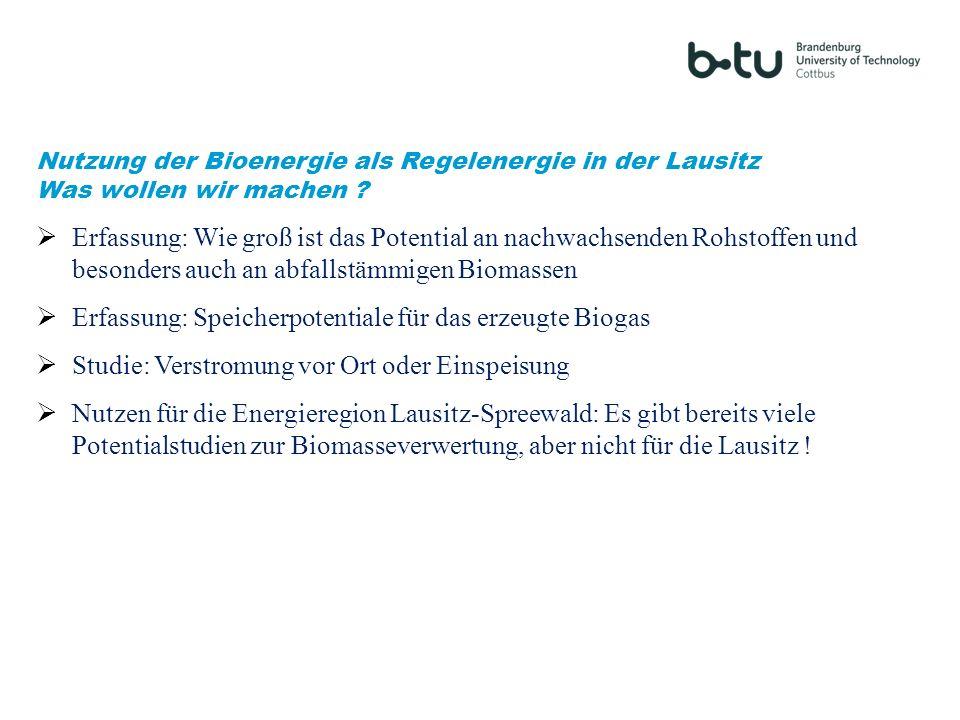 Nutzung der Bioenergie als Regelenergie in der Lausitz Was wollen wir machen ? Erfassung: Wie groß ist das Potential an nachwachsenden Rohstoffen und