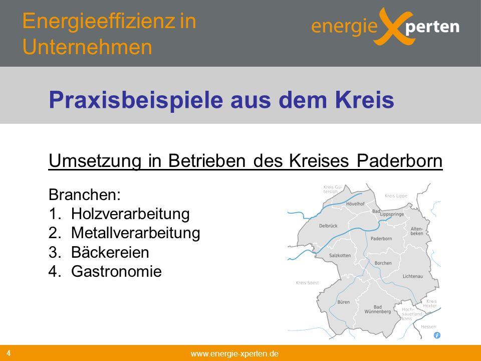 Energieeffizienz in Unternehmen www.energie-xperten.de 4 Umsetzung in Betrieben des Kreises Paderborn Branchen: 1. Holzverarbeitung 2. Metallverarbeit