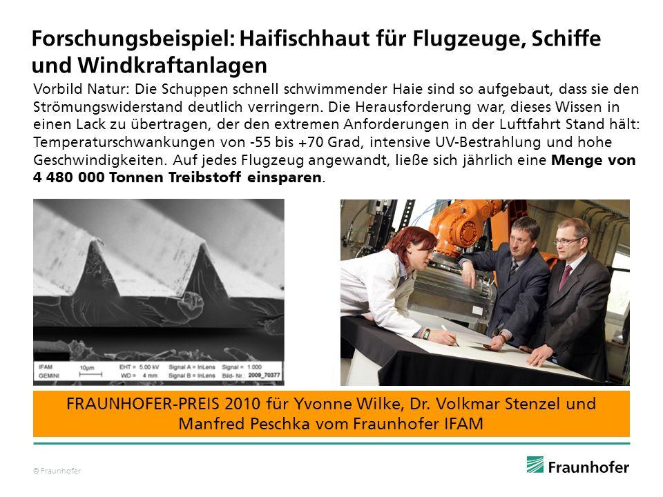 © Fraunhofer Forschungsbeispiel: Haifischhaut für Flugzeuge, Schiffe und Windkraftanlagen Vorbild Natur: Die Schuppen schnell schwimmender Haie sind s