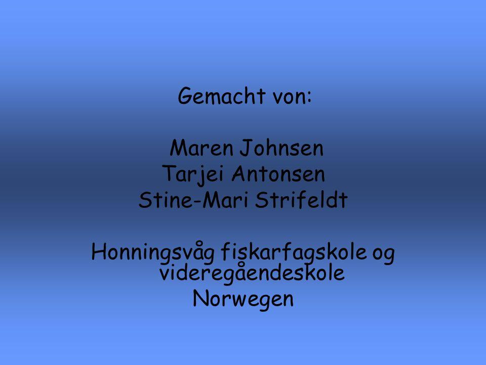 Gemacht von: Maren Johnsen Tarjei Antonsen Stine-Mari Strifeldt Honningsvåg fiskarfagskole og videregåendeskole Norwegen