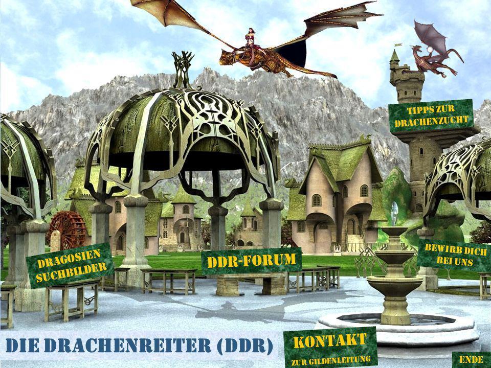 Die Drachenreiter (DDR) DDR-Forum Bewirb dich bei uns Tipps zur DRachenzucht Dragosien suchbilDer ENDE Kontakt Zur Gildenleitung