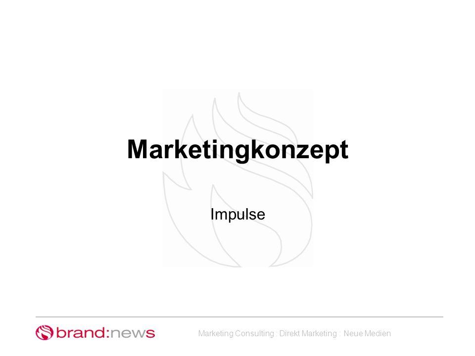 Marketing Consulting : Direkt Marketing : Neue Medien Was beinhaltet ein Marketingkonzept.
