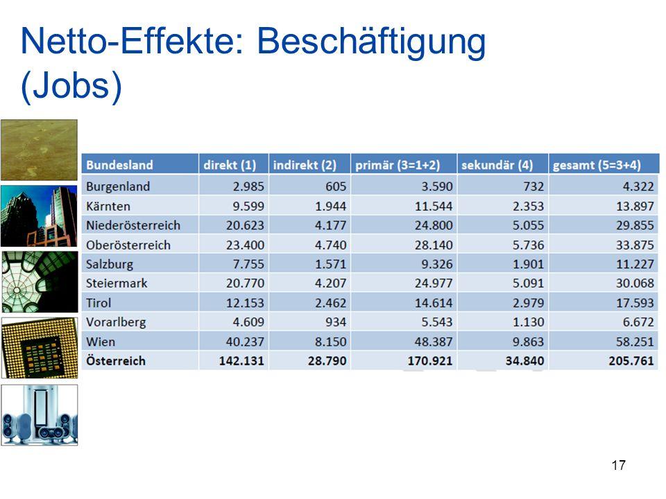Netto-Effekte: Beschäftigung (Jobs) 17