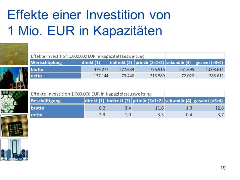 Effekte einer Investition von 1 Mio. EUR in Kapazitäten 19