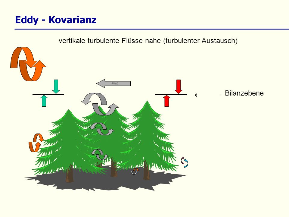 vertikale turbulente Flüsse nahe (turbulenter Austausch) Wind Eddy - Kovarianz Bilanzebene