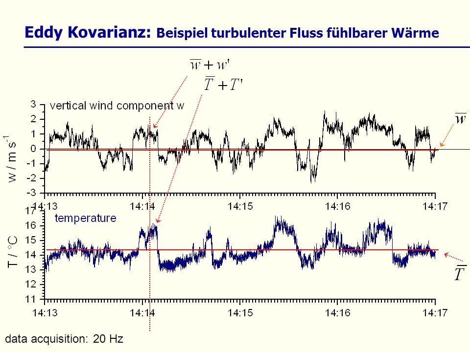 Reynolds- averaging Eddy Kovarianz: Beispiel turbulenter Fluss fühlbarer Wärme