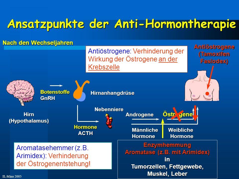 IL-März 2005 Ansatzpunkte der Anti-Hormontherapie Hirn(Hypothalamus) HormoneACTH Nebenniere Hirnanhangdrüse Androgene Östrogene Androgene Östrogene Bo