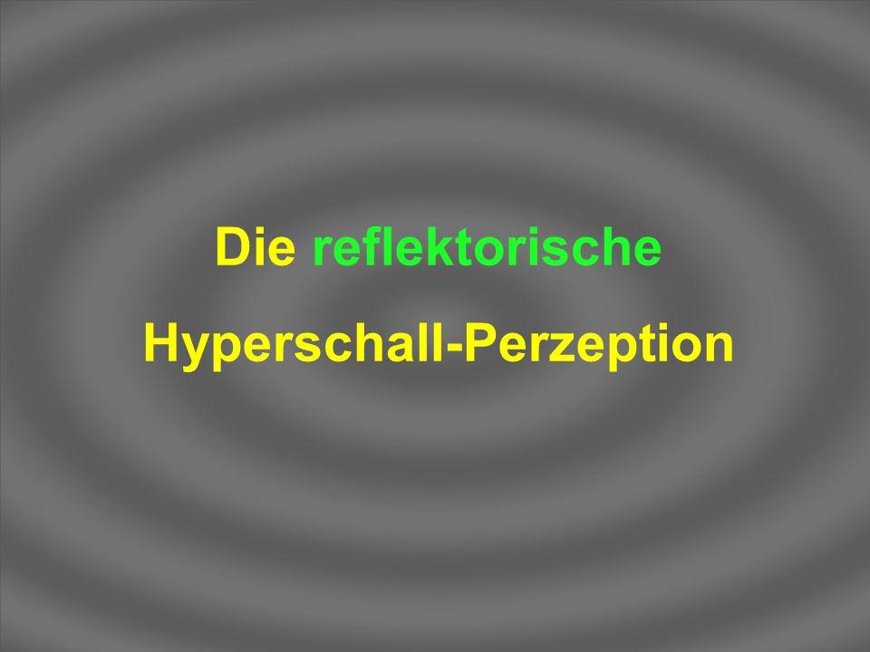 Die reflektorische Hyperschall-Perzeption