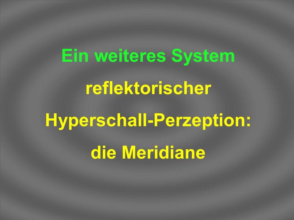 Ein weiteres System reflektorischer Hyperschall-Perzeption: die Meridiane