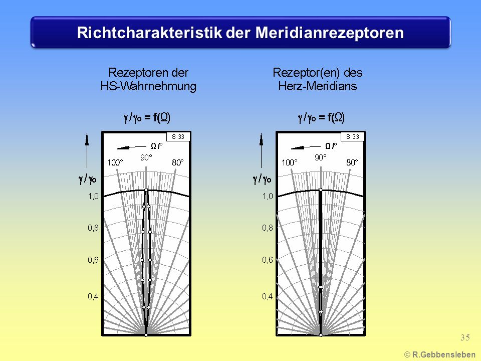Richtcharakteristik der Meridianrezeptoren © R.Gebbensleben 35
