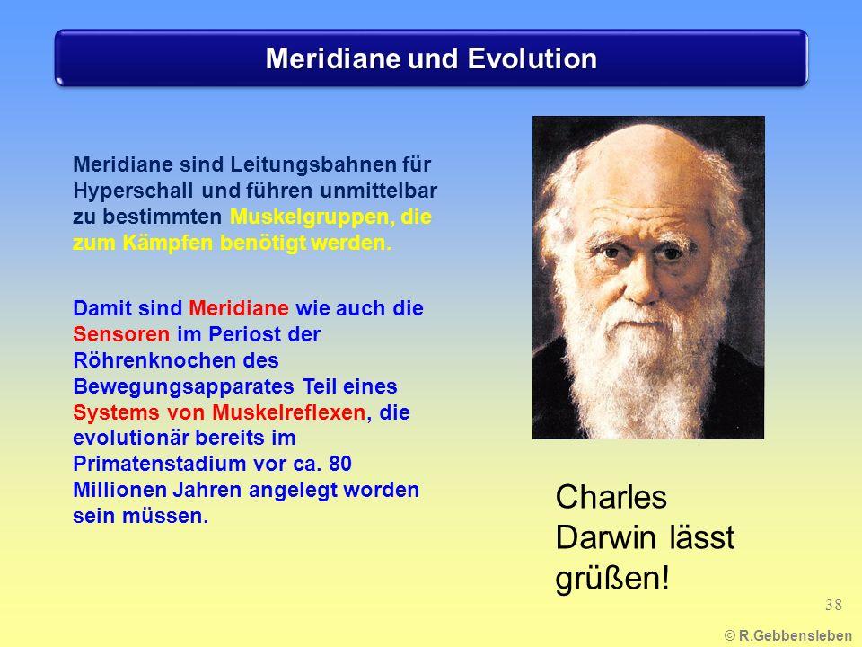 Meridiane und Evolution © R.Gebbensleben 38 Meridiane sind Leitungsbahnen für Hyperschall und führen unmittelbar zu bestimmten Muskelgruppen, die zum