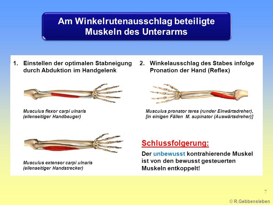 1.Einstellen der optimalen Stabneigung durch Abduktion im Handgelenk 2.Winkelausschlag des Stabes infolge Pronation der Hand (Reflex) Schlussfolgerung: Der unbewusst kontrahierende Muskel ist von den bewusst gesteuerten Muskeln entkoppelt.