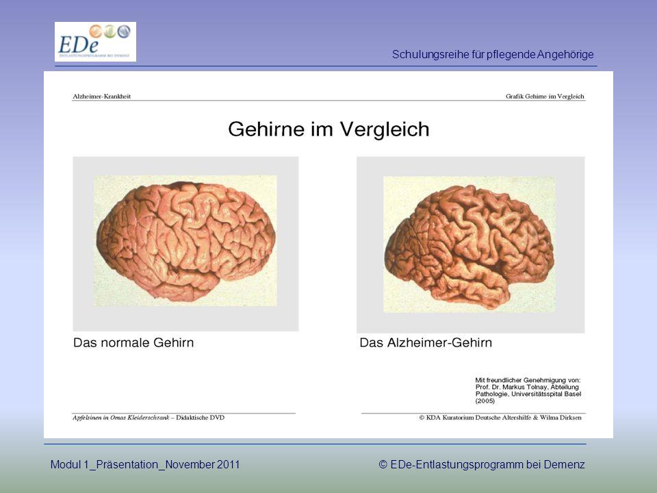 Primäre Demenz –unumkehrbar –nicht heilbar Sekundäre Demenz –kann möglicherweise aufgehalten werden –je nach Ursache auch heilbar Schulungsreihe für pflegende Angehörige Modul 1_Präsentation_November 2011© EDe-Entlastungsprogramm bei Demenz