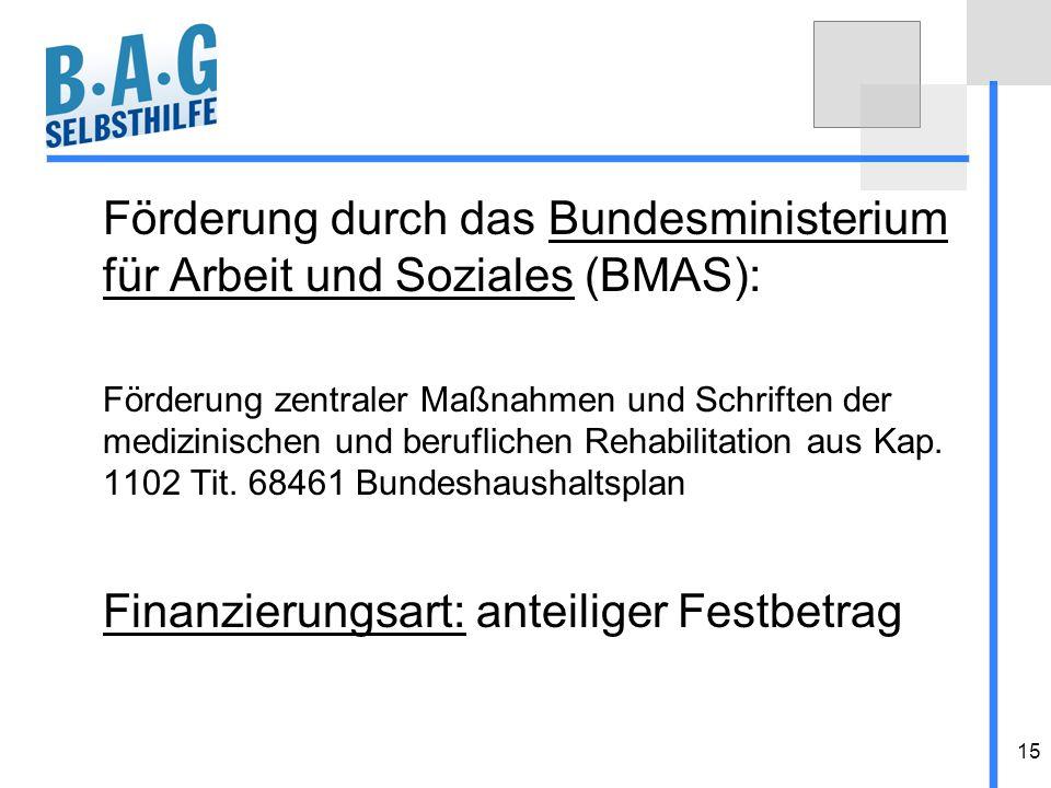 15 Förderung durch das Bundesministerium für Arbeit und Soziales (BMAS): Förderung zentraler Maßnahmen und Schriften der medizinischen und beruflichen