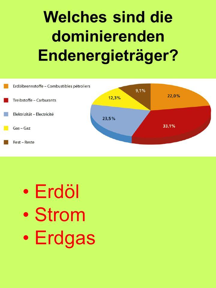 Welches sind die dominierenden Endenergieträger? Erdöl Strom Erdgas