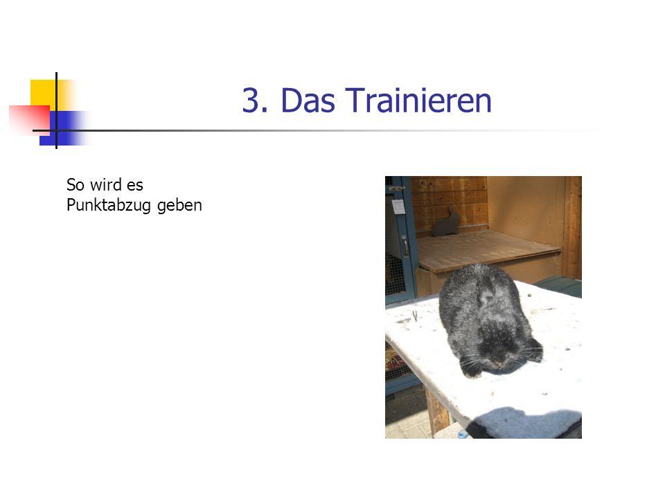 3. Das Trainieren So wird es Punktabzug geben