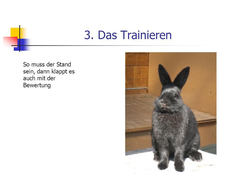3. Das Trainieren So muss der Stand sein, dann klappt es auch mit der Bewertung