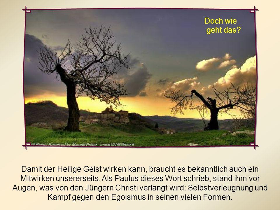 Tatsächlich sind diejenigen, die sich vom Geist leiten lassen, Tag für Tag herausgefordert, den guten Kampf des Glaubens (1 Tim 6,12) zu kämpfen, um d