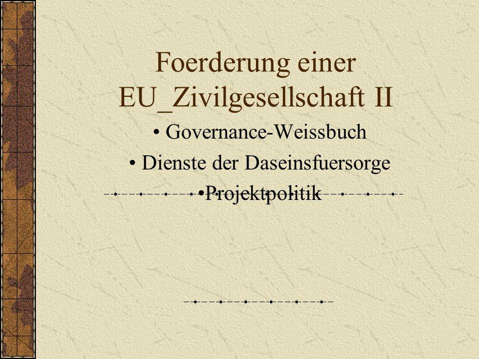 Foerderung einer EU_Zivilgesellschaft II Governance-Weissbuch Dienste der Daseinsfuersorge Projektpolitik