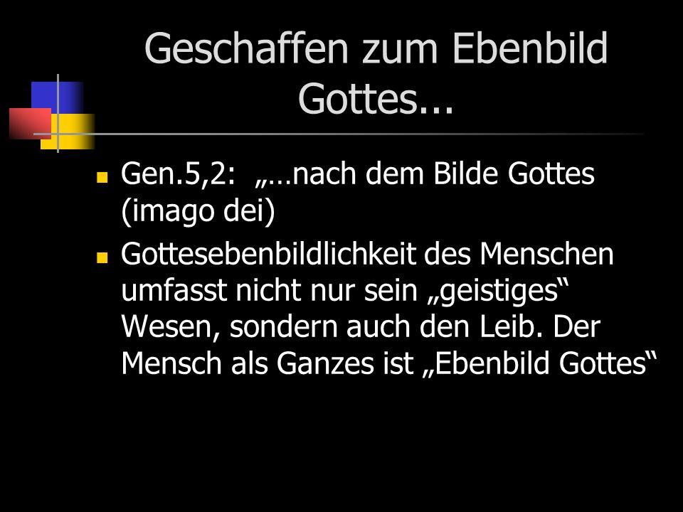 Geschaffen zum Ebenbild Gottes... Gen.5,2: …nach dem Bilde Gottes (imago dei) Gottesebenbildlichkeit des Menschen umfasst nicht nur sein geistiges Wes