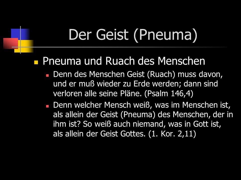 Der Geist (Pneuma) Pneuma und Ruach des Menschen Denn des Menschen Geist (Ruach) muss davon, und er muß wieder zu Erde werden; dann sind verloren alle