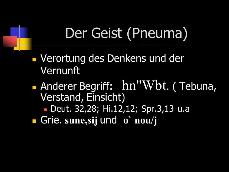 Der Geist (Pneuma) Verortung des Denkens und der Vernunft Anderer Begriff: hn