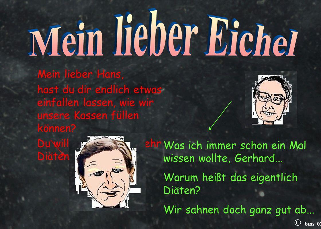© bms 02 Mensch Eichel, du kannst nicht nur keine Steuererklärung selbst machen, du hast auch von Politik nicht die geringste Ahnung.
