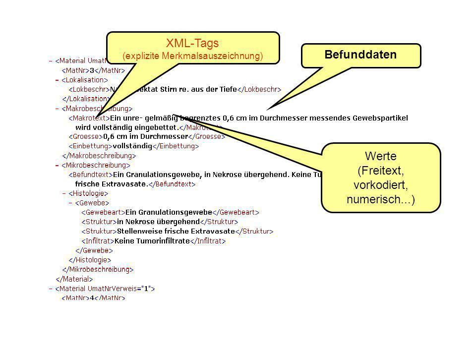 Befunddaten XML-Tags (explizite Merkmalsauszeichnung) Werte (Freitext, vorkodiert, numerisch...)