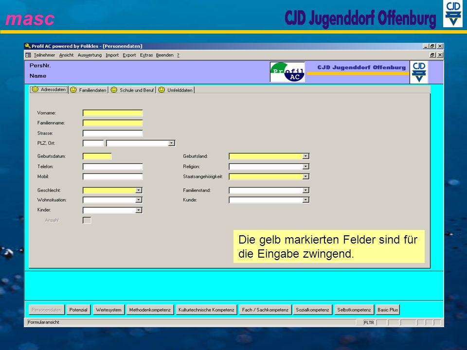 masc Client / Server Architektur (Client-Komponenten) Settings (Einstellungen des Clients) IPR_PersAdr (Daten der Module) IPR_Data (Personenstammdaten) Profile (Dynamische Anforderungs- profile) IPR_MIX (GUI) (Server-Komponenten) Kompetenzbericht-Dateien (Infrastruktur Dateien)