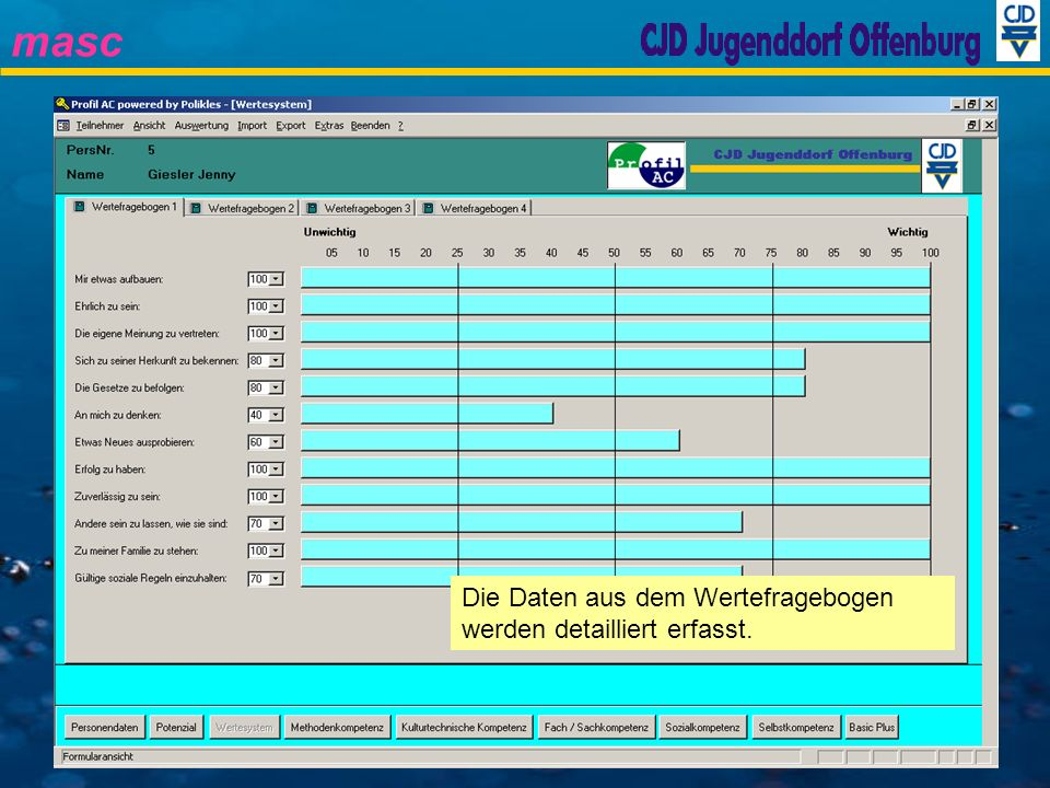 masc Die Daten aus dem Wertefragebogen werden detailliert erfasst.