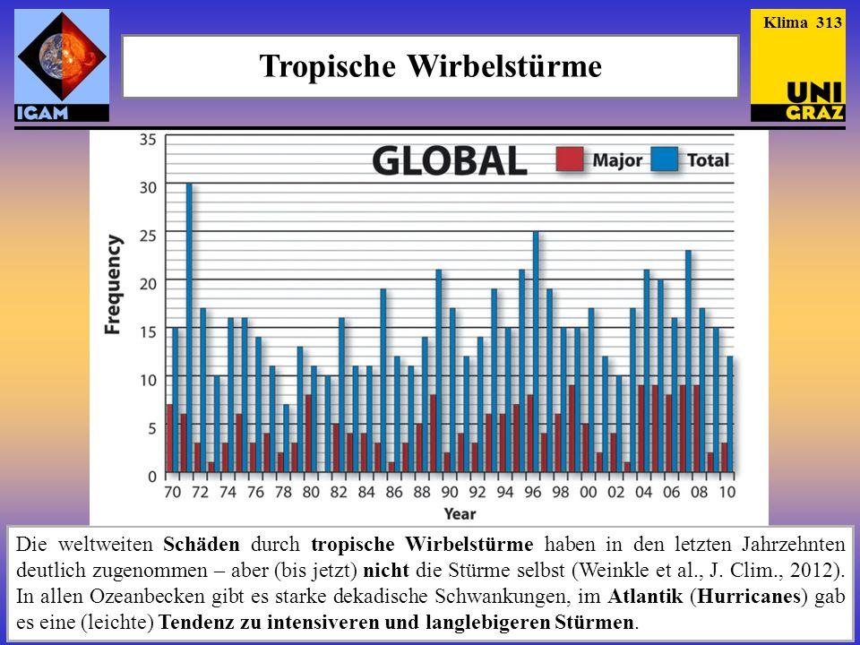 Tropische Wirbelstürme Die weltweiten Schäden durch tropische Wirbelstürme haben in den letzten Jahrzehnten deutlich zugenommen – aber (bis jetzt) nic